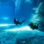 Tonga Diving Tour