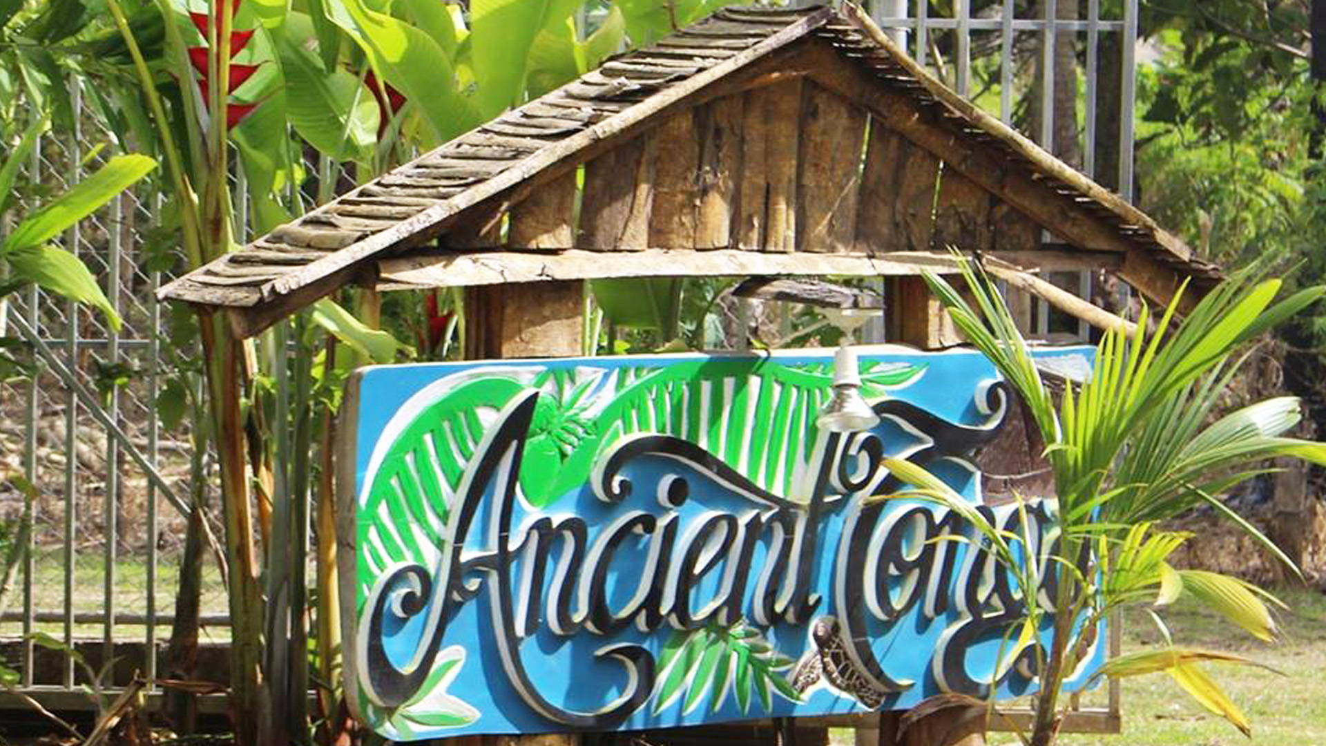 Ancient Tonga - Tours