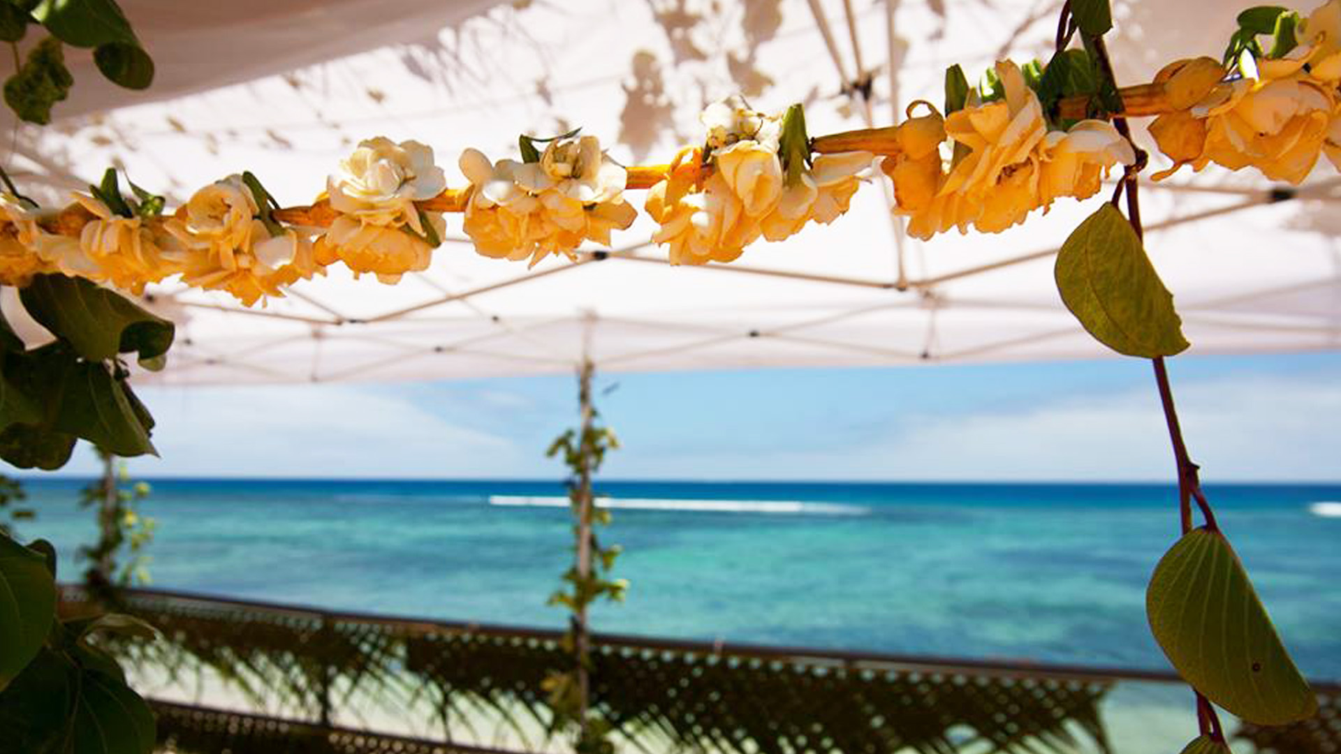 Vakaloa Beach Resort Tours Tonga